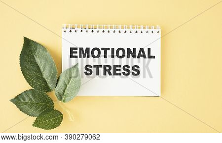 Text Sign Showing Emotional Stress. Conceptual Photo Controlling Feelings In Oneself Maintain Compos