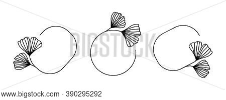 Vector Set Of Black Frames With Ginkgo Biloba Leaves In Trendy Linear Style Isolated On White Backgr