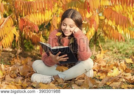 Hobby And Interests. Child Enjoy Reading. Schoolgirl Study. Study Every Day. Girl Read Book Autumn D