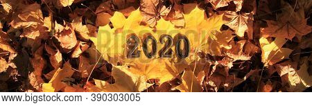 Autumn Or Fall Of 2020. Inscription In Golden Numbers 2020, Is Lying On Yellow Maple Leaves, Symboli
