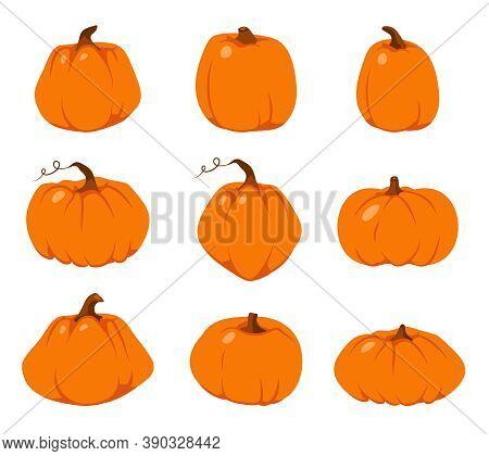 Set Of Autumn Pumpkin Flat Icon. Cartoon Different Shape Orange Gourd. Symbol Thanksgiving And Hallo