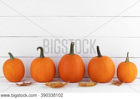 Orange pumpkins and autumn leaves in a row on white wooden background with copy space