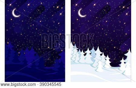 Winter And Summer Spruce Forest On The Background Of The Starry Sky.