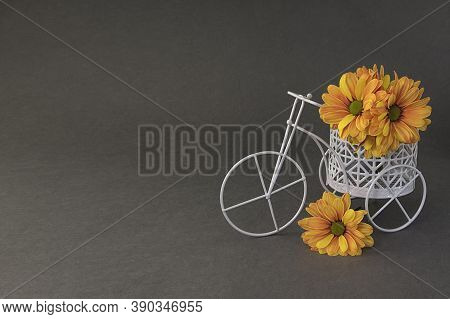 Orange And Yellow Chrysanthemum Flowers In Small Toy White Bicycle, Mini Tricycle With Bouquet On Gr