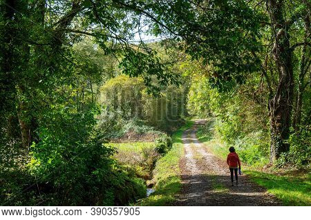 A Woman Walking In Countryside At Summer  Time