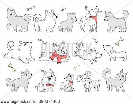 Funny Dogs. Domestic Puppy Characters In Action Poses Sitting Jumping Playing Vector Animals. Domest
