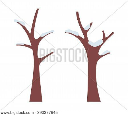 Brown Bare Tree Trunks With Snowy Hoarfrost. Snow On The Wooden Branches. Trunks Without Foliage. Wi