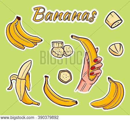 Vector Set Of Cartoon Yellow Bananas. Overripe Banana, One Banana, Peeled Banana, Bunch Of Bananas.