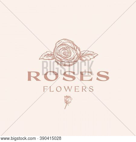 Flowers Abstract Vector Sign, Symbol Or Logo Template. Hand Drawn Sketch Roses Illustration With Cla