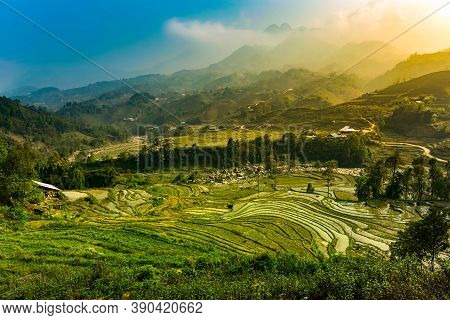 Sa Pa Vietnam Rice Terraces In The Hoang Lien Son Mountains
