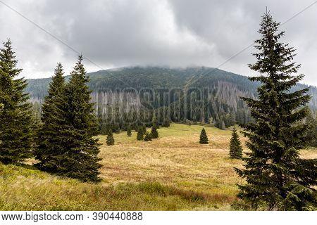 Autumn Landscape Of Waksmundzka Glade (waksmundzka Polana) In Tatra Mountains, Poland, With Conifero