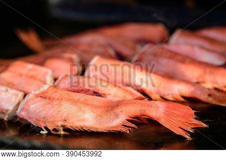 Raw Rose Fish Also Known As Ocean Perch, Atlantic Golden Redfish, Bream Or Hemdurgan Ready To Be Gri