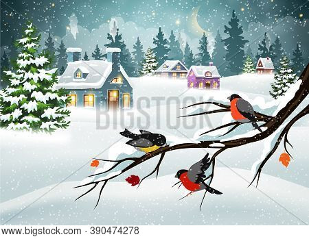 Winter Christmas Landscape With Village Houses Covered With Snow In A Pine Forest And Bullfinches On