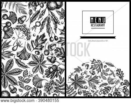 Menu Cover Design With Black And White Fern, Dog Rose, Rowan, Ginkgo, Maple, Oak, Horse Chestnut, Ch