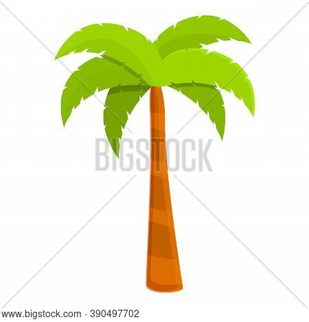 Coconut Palm Icon. Cartoon Of Coconut Palm Vector Icon For Web Design Isolated On White Background