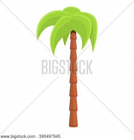 Graceful Palm Tree Icon. Cartoon Of Graceful Palm Tree Vector Icon For Web Design Isolated On White