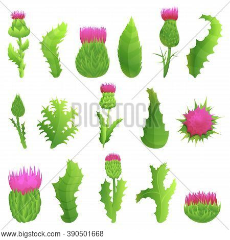 Thistle Icons Set. Cartoon Set Of Thistle Vector Icons For Web Design