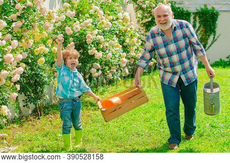 Grandfather And Grandson. Old And Young. Concept Of A Retirement Age. Father And Son Grows Flowers T