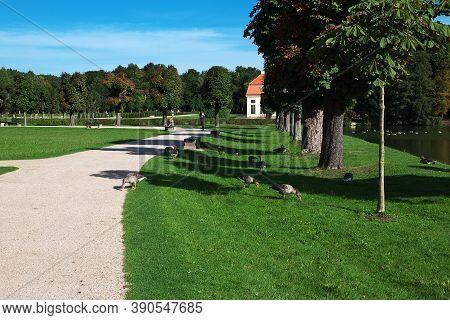 Moritzburg, Saxony, Germany - 08 Sep 2015: The Duck In Moritzburg Schloss In Germany, Saxony