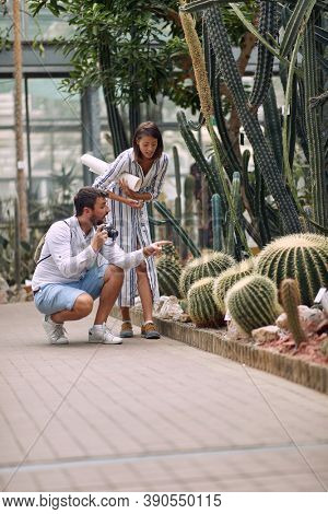 Male visitor questioning female guide about beautiful cactuses at the conservatory