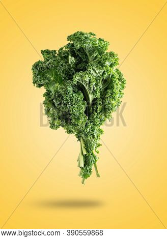 A Levitating Kale Cabbage Isolated From The Orange Background