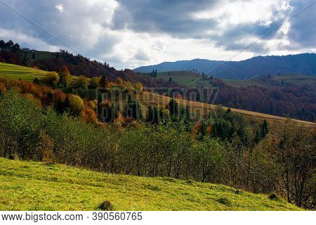 Mountainous Countryside Landscape In Autumn. Beautiful Scenery With Forested Rolling Hills In Fall C