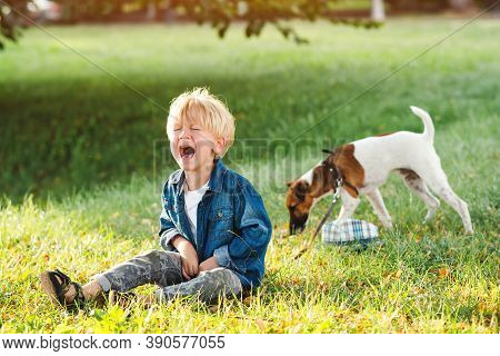 Little Boy Crying And Sitting On The Ground. Kids Tantrums During Walk. Upset Child Boy At The Summe