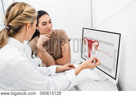 Gynecologist Communicates With Her Patient, Indicating The Menstrual Cycle On The Monitor. The Repro