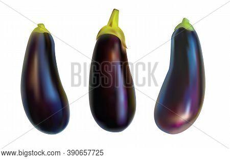 Aubergine Vegetable, Purple Eggplant Isolated On White Background. Realistic Image Of A Brinjal.