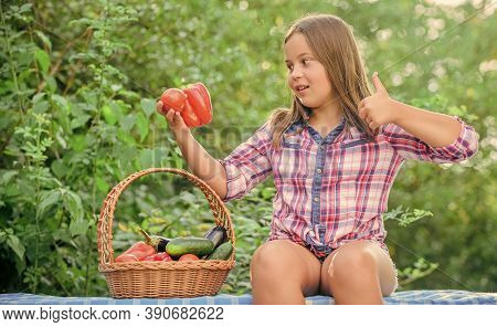 Gmo Free. Eco Farming. Girl Cute Smiling Child Living Healthy Life. Healthy Lifestyle. Kid Gathering