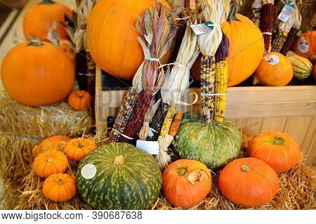 New York, Usa - October 20, 2018: Traditional Marketplace Chelsea Market In New York. Colorful Pumpk