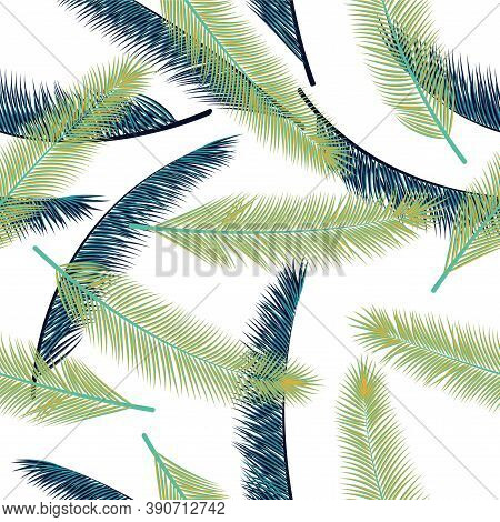 Tropical Feather Plumage Vector Pattern. Vintage Illustration. Airy Natural Feather Plumage Wrapping