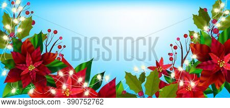 Christmas Winter Floral Banner With Poinsettia Leaves, Holly, Red Berries. Holiday Season X-mas Plan