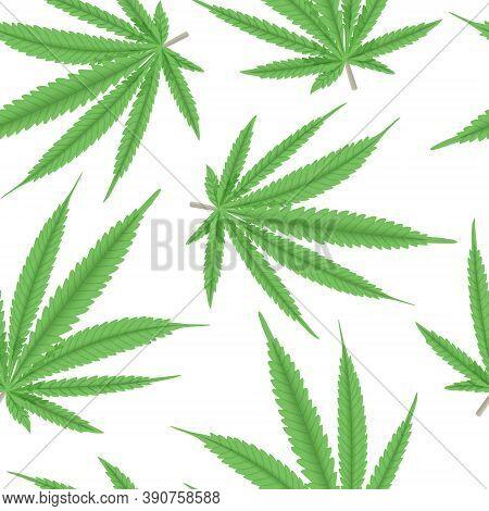 Cannabis Green Leaf Seamless Pattern Vector Illustration. Hemp Plant. For Medicine, Textile, Clothin
