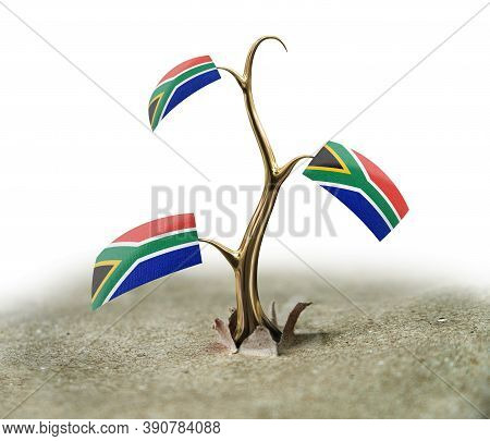 3d Illustration. 3d Sprout With South African Republic Flag On White