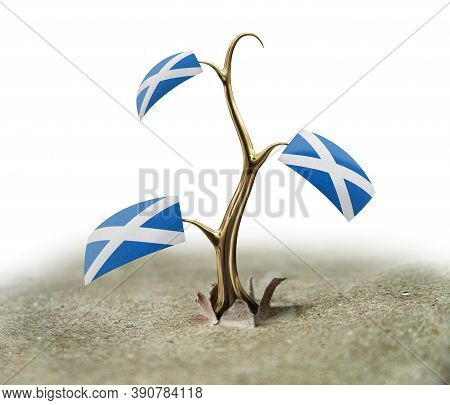 3d Illustration. 3d Sprout With Scottish Flag On White