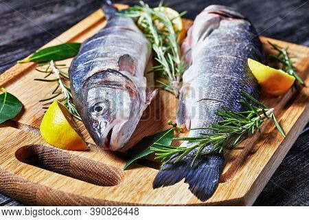 Seabass Fresh Raw Seafood Gutted And Descaled On A Cutting Board With Fresh Rosemary, Lemon Wedges A