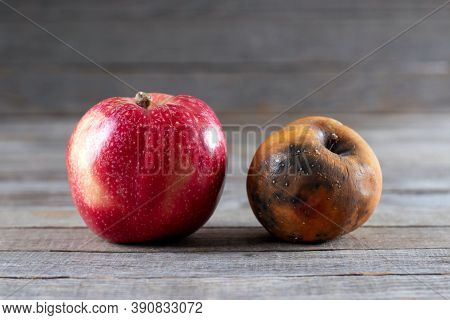 Fresh And Rotten Apples. Ugly Trendy Bad Apple On Wooden Background. Rotten Disgusting Apple.
