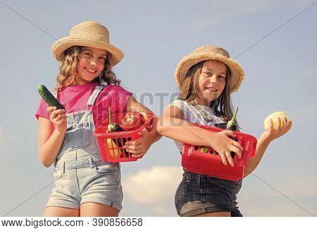 Vegetables Market. Natural Vitamin Nutrition. Organic Vegetables. Girls Cute Children In Hats Farmin
