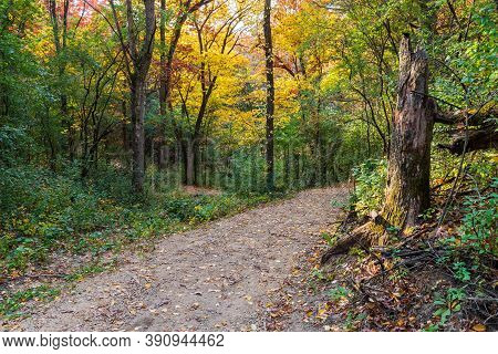 Colorful Autumn Foliage Along Winding Forest Trail At Lebanon Hills Regional Park Minnesota