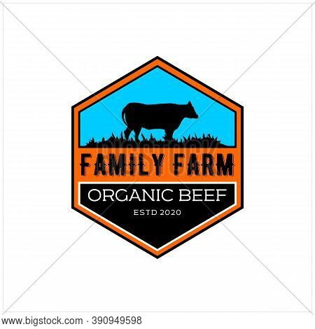 Retro Vintage Cattle Angus Livestock Beef Emblem Label Logo Design Vector