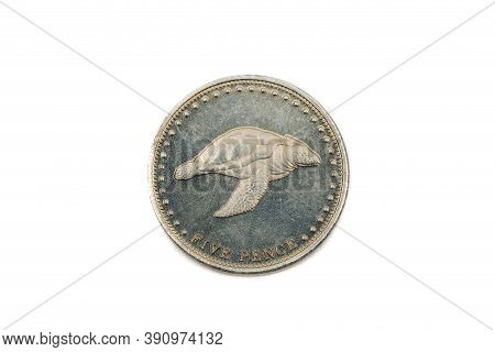A Close Up View Of A Five Pence Coin From Tristan Da Cunha