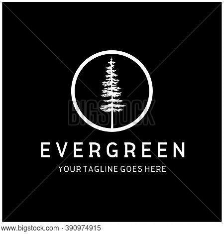 Pine Evergreen Fir Hemlock Spruce Conifer Cedar Tree Forest Vintage Retro Hipster Line Art Logo Desi