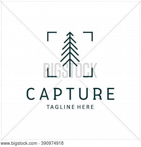 Pine Evergreen Fir Hemlock Spruce Conifer Cedar Tree Forest And Focus Square Lens Frame For Adventur