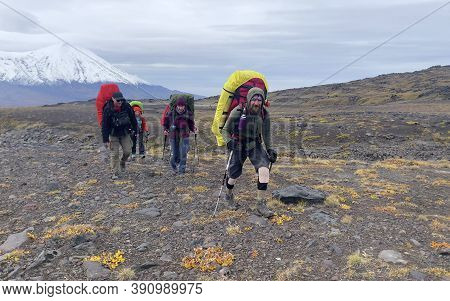 Tourists With Large Backpacks And Trekking Poles Walk Along The Autumn Tundra. Mountain Climbing. Tr
