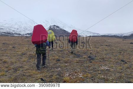 Climbers With Large Backpacks And Trekking Poles Go To The Volcanoes. Mountain Climbing. Trekking In