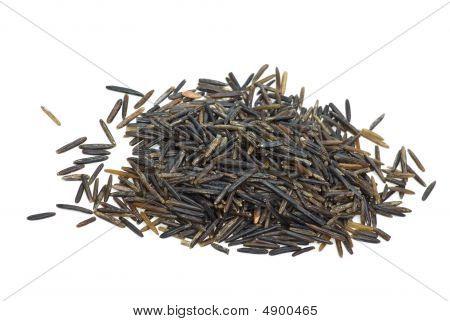 Small Pile Of Black Wild Rice