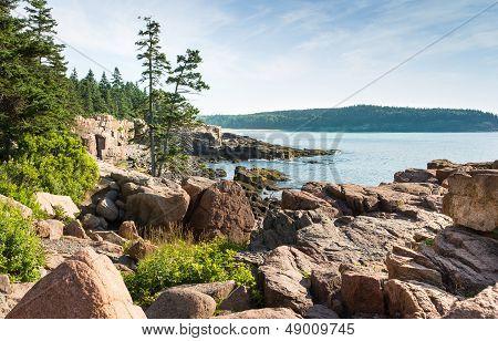 Picturesque Acadia National Park Shoreline