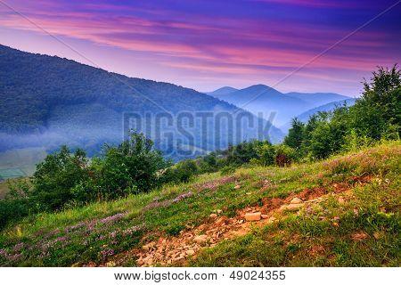 Standing On A Hillside In Morning Fog