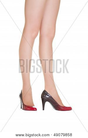 a Beautiful female legs in pantyhose and shoes poster